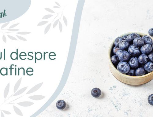 Totul despre afine – 4 beneficii și recomandări, pentru un plus de sănătate