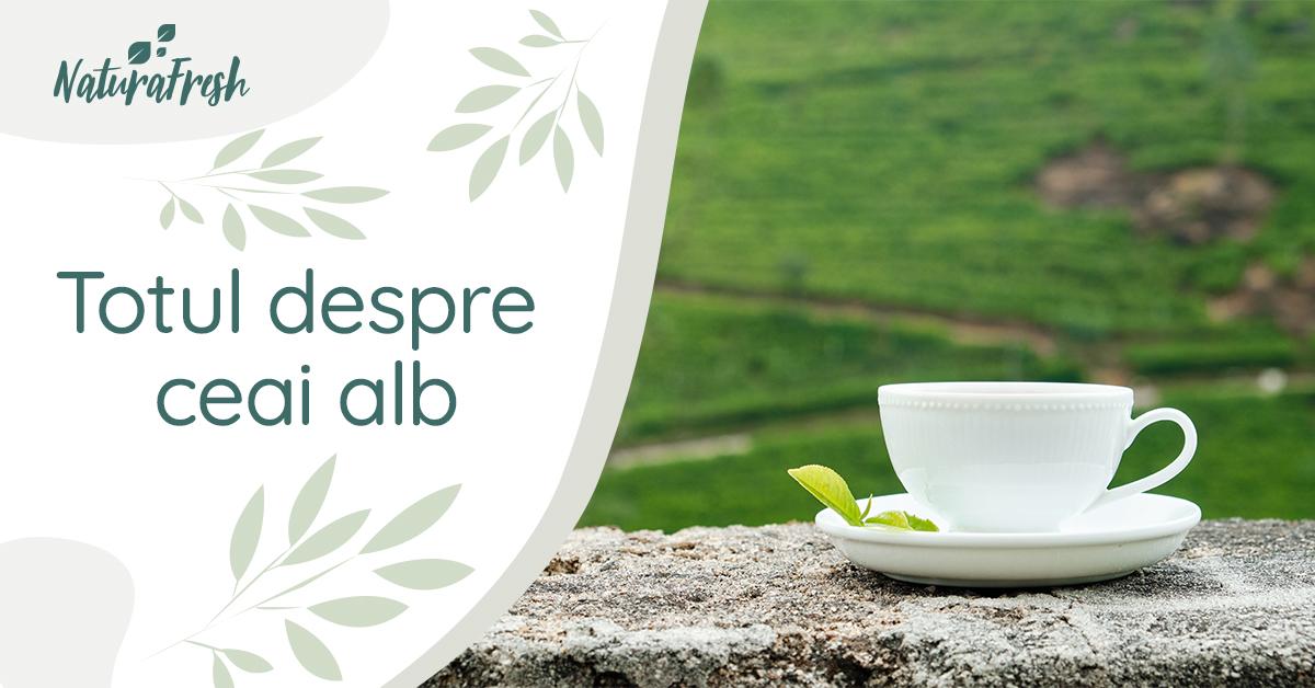 Totul despre ceai alb 6 beneficii și mod de preparare - NaturaFresh - Ceai alb