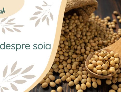 Totul despre soia – 9 beneficii și recomandări de preparare