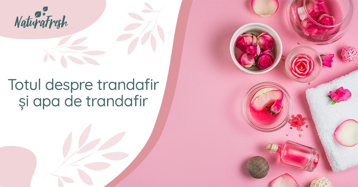 Totul despre trandafir și apa de trandafir 7 beneficii - NaturaFresh - Trandafir și apa de trandafir