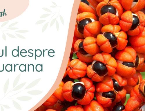 Totul despre guarana – 10 beneficii și recomandări, pentru un plus de sănătate