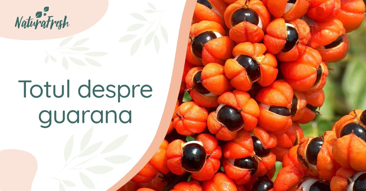 Totul despre guarana 10 beneficii și recomandări, pentru un plus de sănătate - NaturaFresh - Fructul guarana