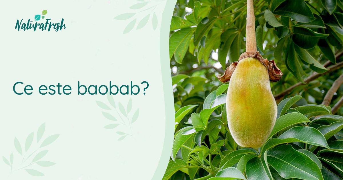 Totul despre baobab - 6 beneficii și recomandări, pentru un plus de sănătate - NaturaFresh - Ce este baobab?