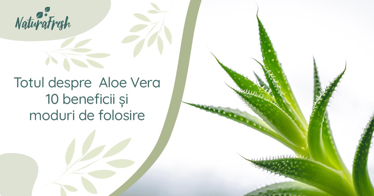 Totul despre Aloe Vera 10 beneficii și moduri de folosire - NaturaFresh - Aloe Vera