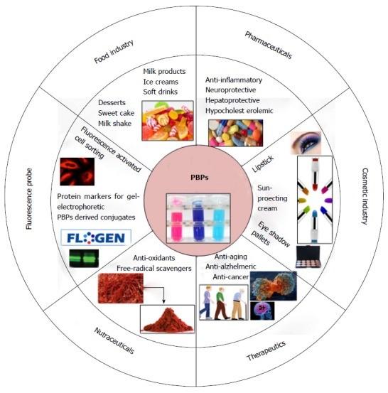 Ficobiliproteinele și cianobacteriile - NaturaFresh - Utilizarea ficobiliproteinelor și cianobacterilor